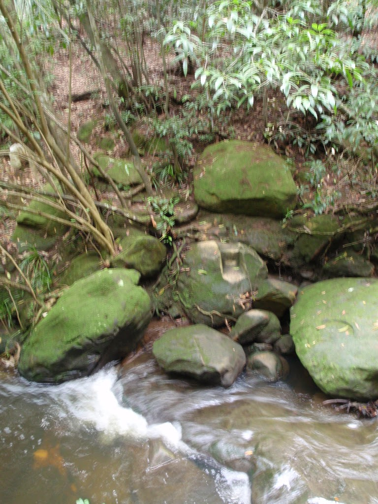 Lovers Jump Creek crossing on Gibbergong track