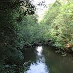 Gibbergong water hole (117430)