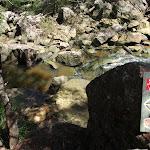 Warrimoo Track pass the creek