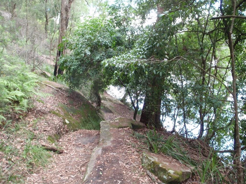 Berowra Track near Apple Tree Bay