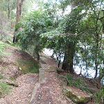 Berowra Track near Apple Tree Bay