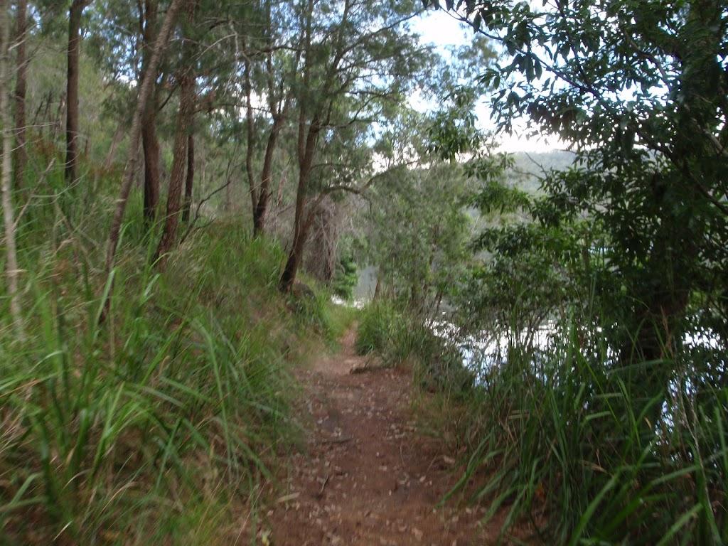 Meandering along the bank of Cowan Creek