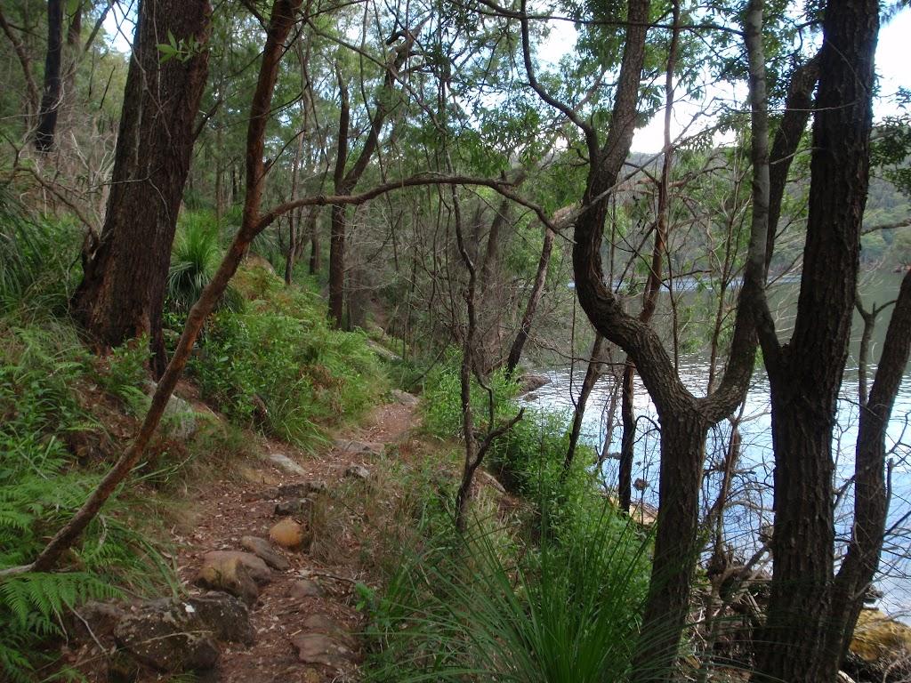 Track following Cowan Creek