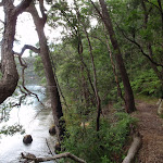 View of Cowan creek near Intersection of Berowra and Mt Ku-ring-gai tracks (118474)