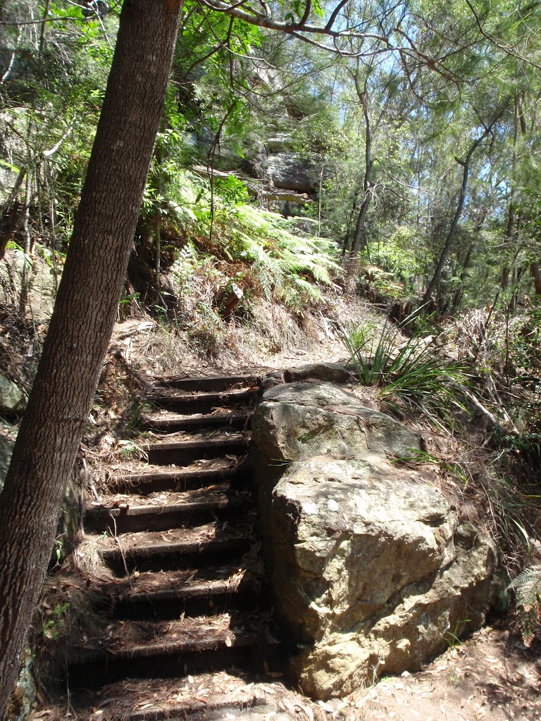 Steps at bottom of Bobbin Head Track (118489)