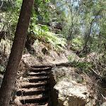 Steps at bottom of Bobbin Head Track (118489)
