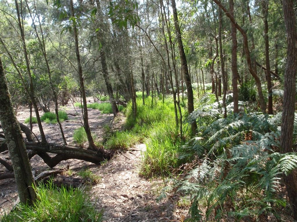 The Gibbergong track on the flats near Bobbin Head