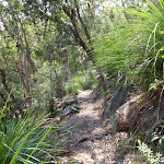 The Gibberagong Track