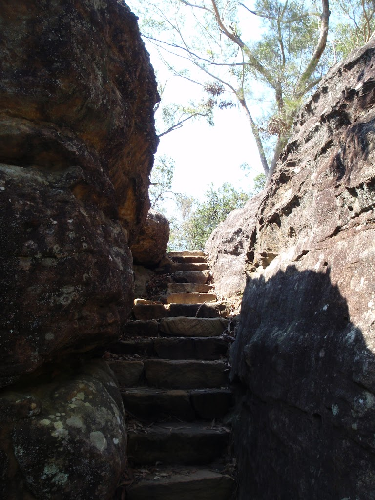 Gibbergong track using stone stairs near the end of the boardwalk (118852)