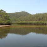 Cowan Creek from Warrimoo Track (119086)