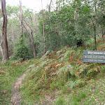 Signpost along Birrawana Track