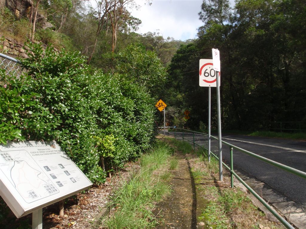 Lower end of Cockle Creek lookout track. (119908)