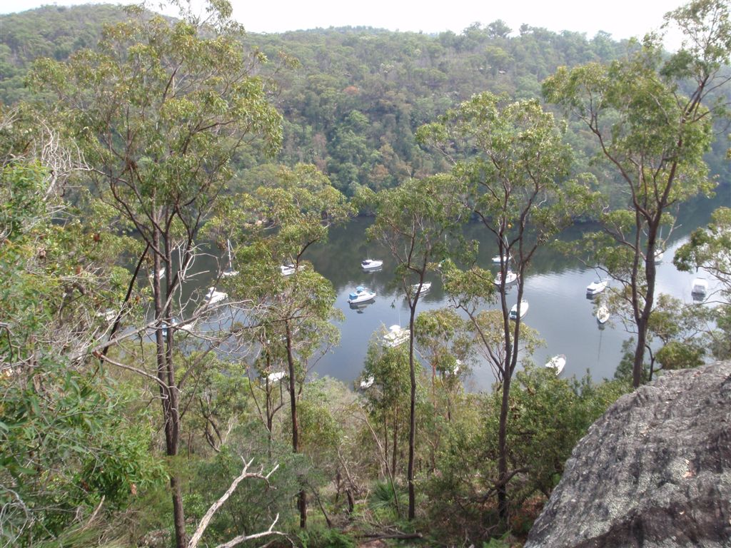 View from Apple Tree Flat Lookout
