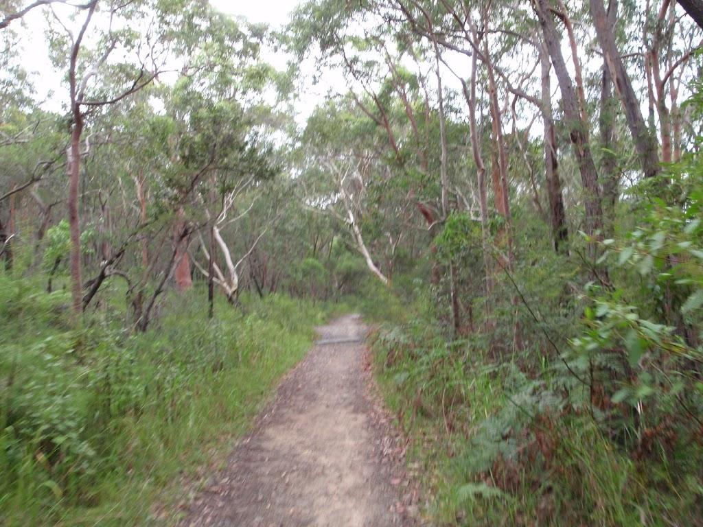 Cascades Track (120139)
