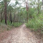 The Upper Cambourne Track (120295)