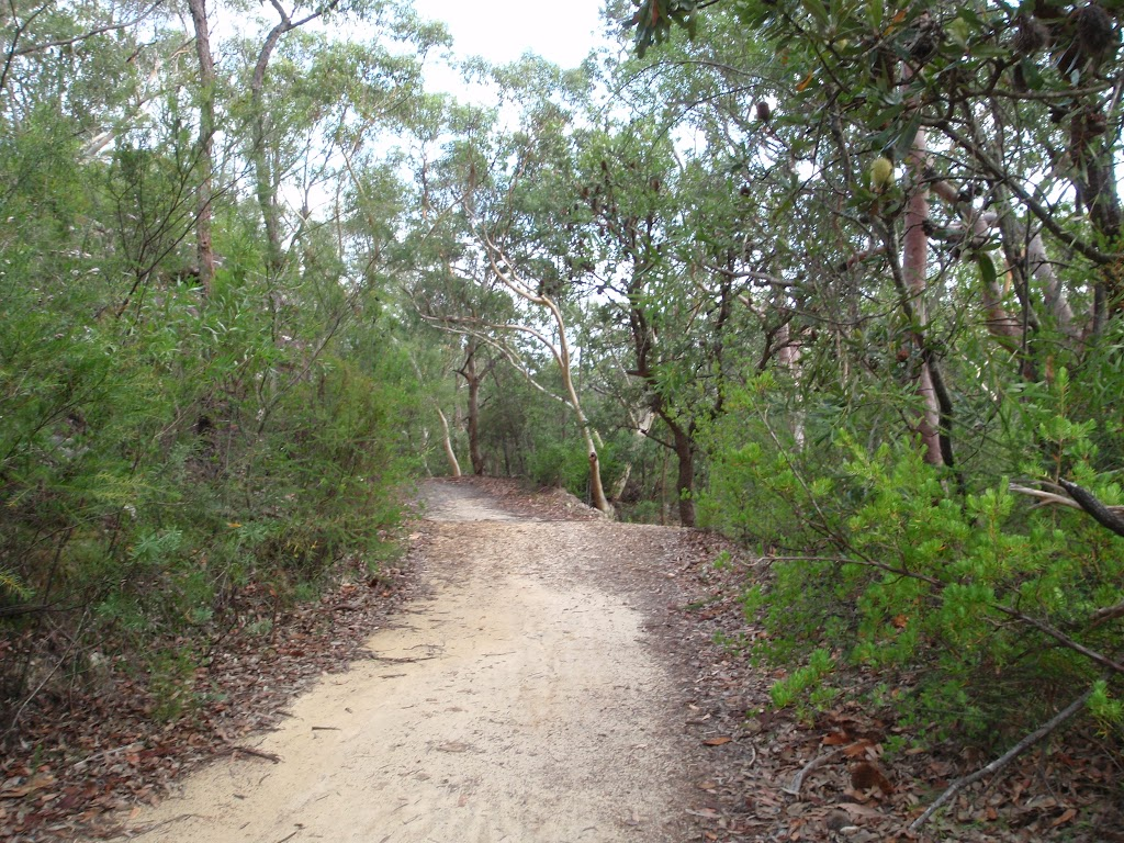 Heading up through the bush to the Lower Cambourne Track