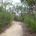 Heading up through the bush to the Lower Cambourne Track (120520)