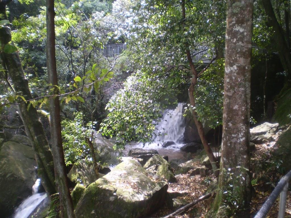 Katoomba Falls (12083)