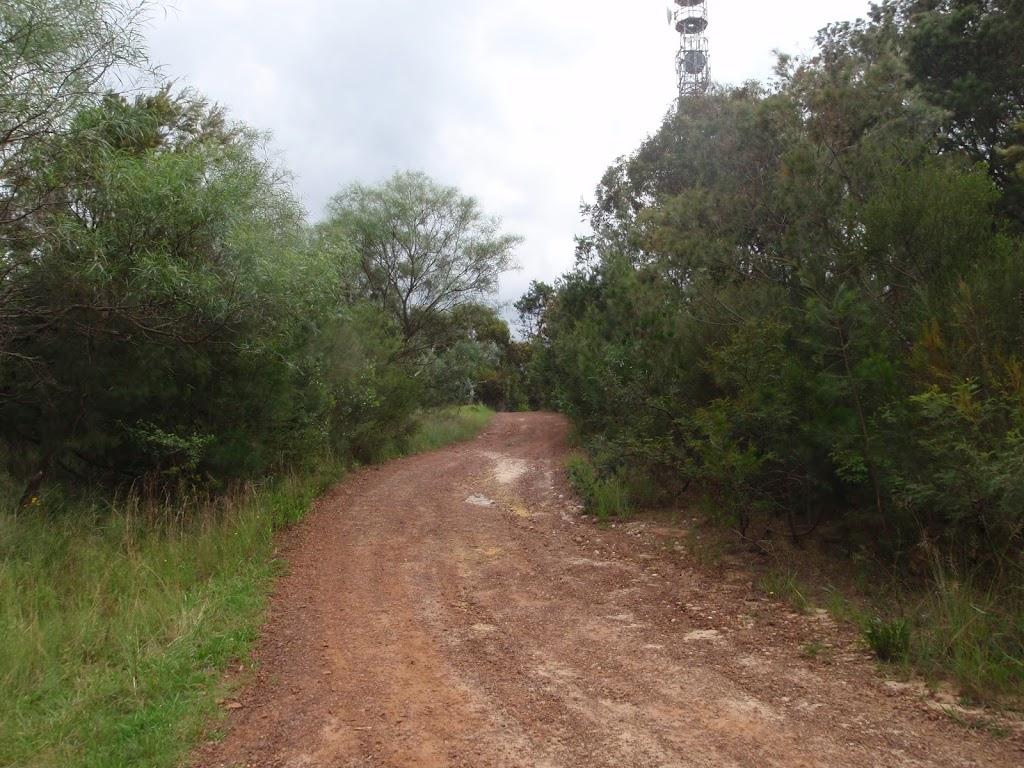 The Bare Creek service trail