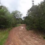 The Bare Creek service trail (121000)