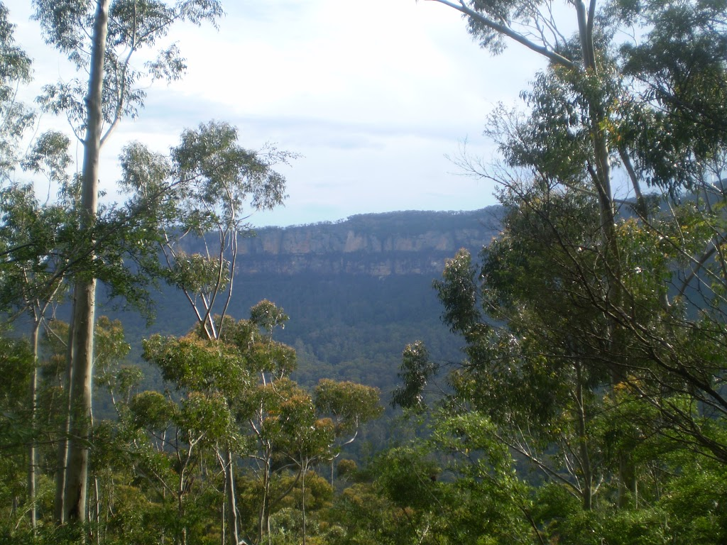 View of the valley just south-west of Scenic World