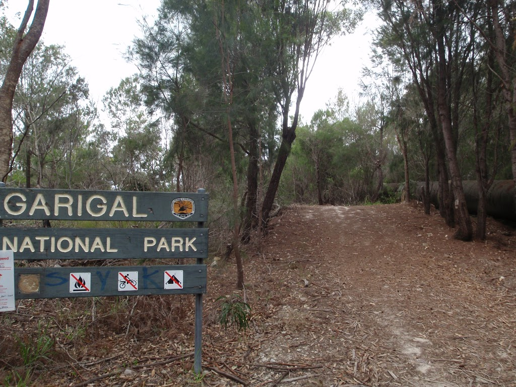 Welcome to Garigal National Park