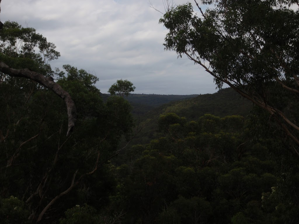 View from mid way along Bungaroo track