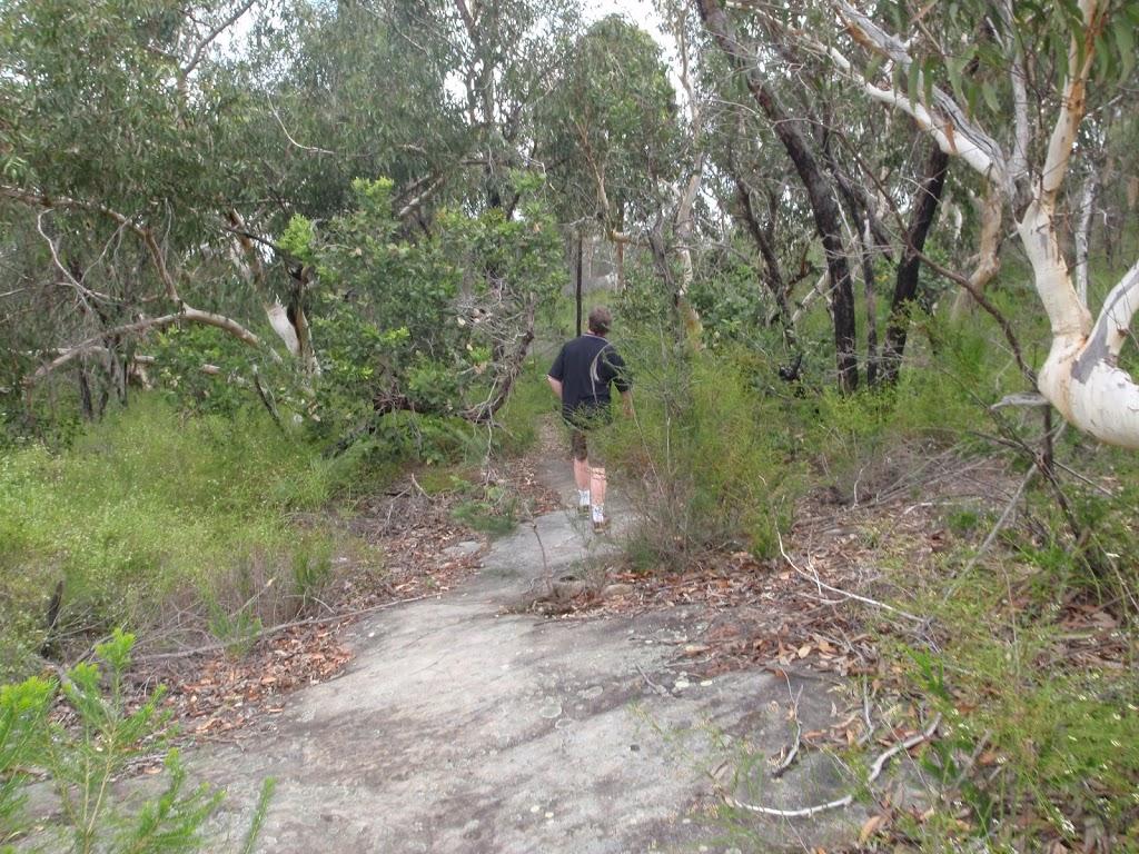 wandering along Bungaroo track