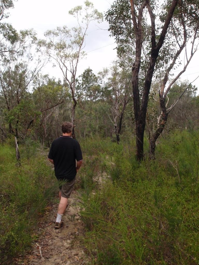 exploring Bungaroo track