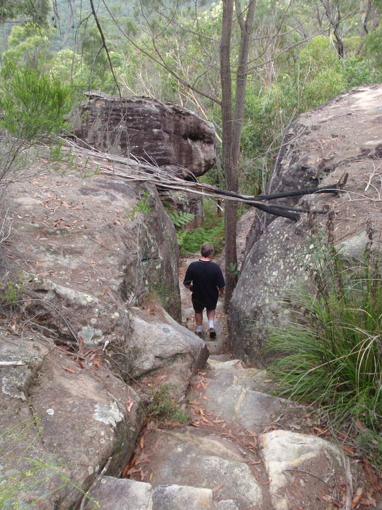 Steps on Bungaroo track