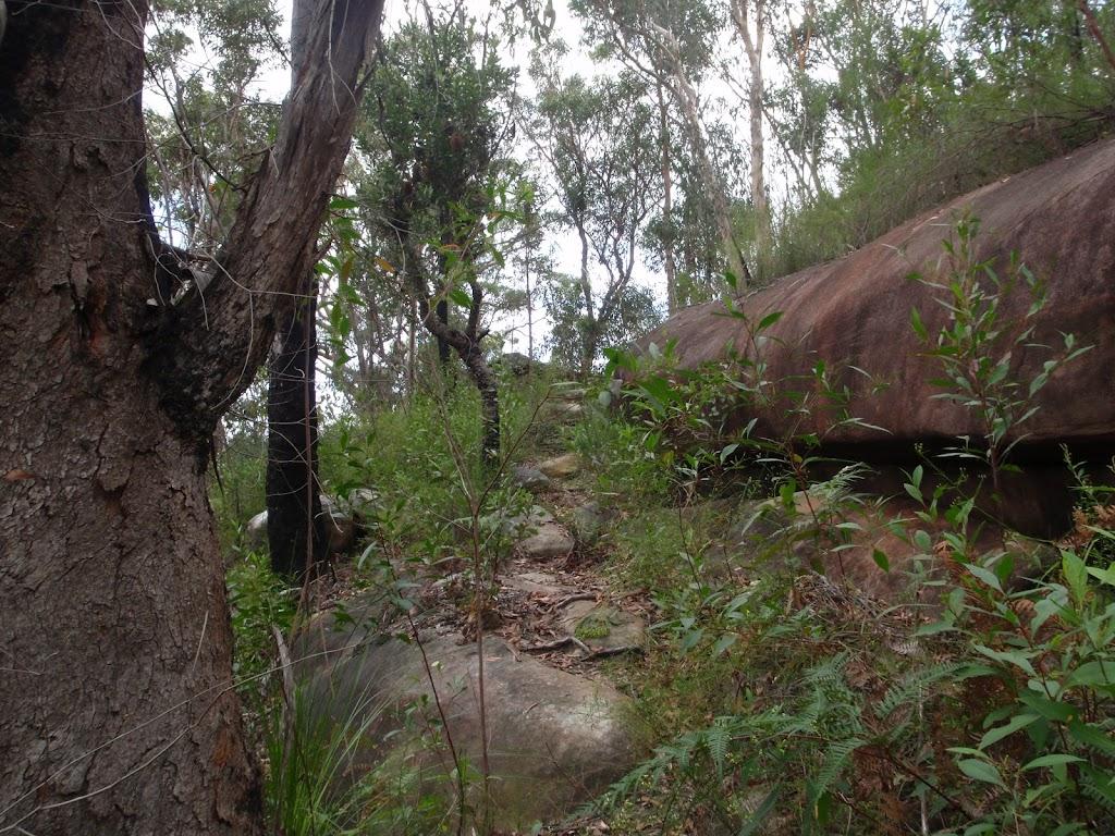 Heading up the rocky bushtrack