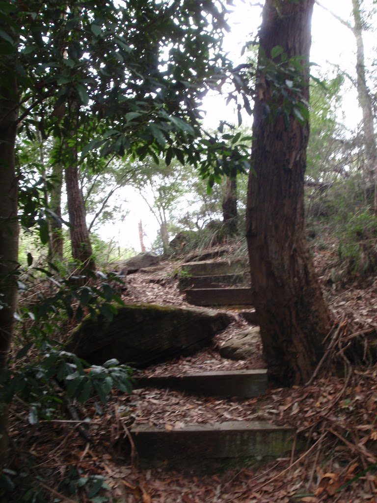 Steps at the bottom of the Bungaroo track