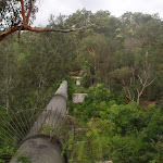 The Gordon Creek Pipe Bridge (123622)