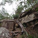 Climbing up a short hill
