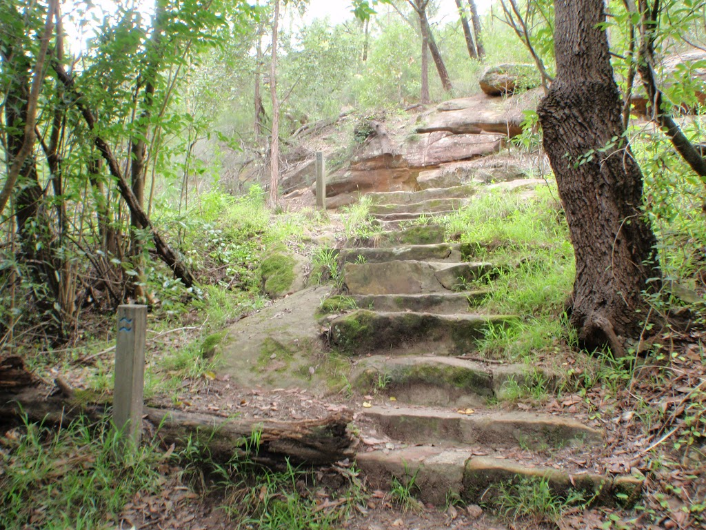Steps near Gordon Creek falls (124975)