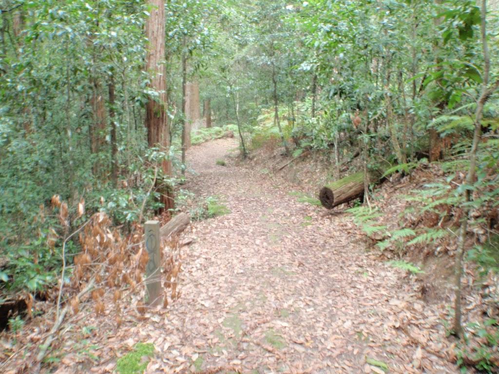 Track through Seven Little Australians Park