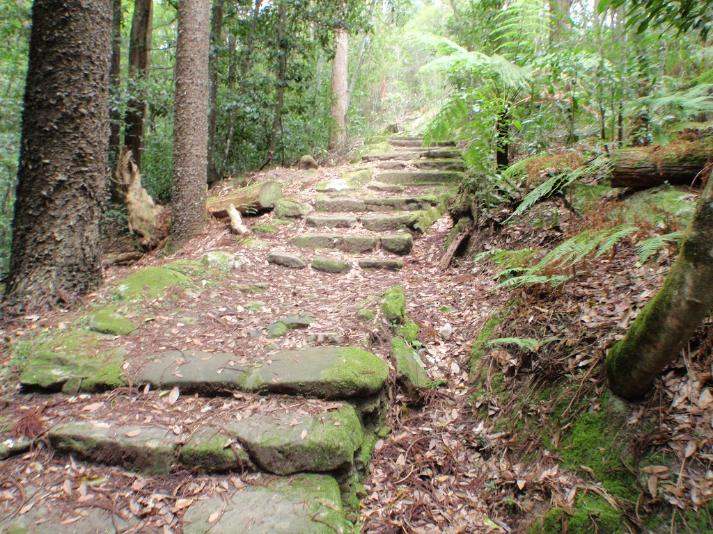 Historic steps on Two Creeks Track