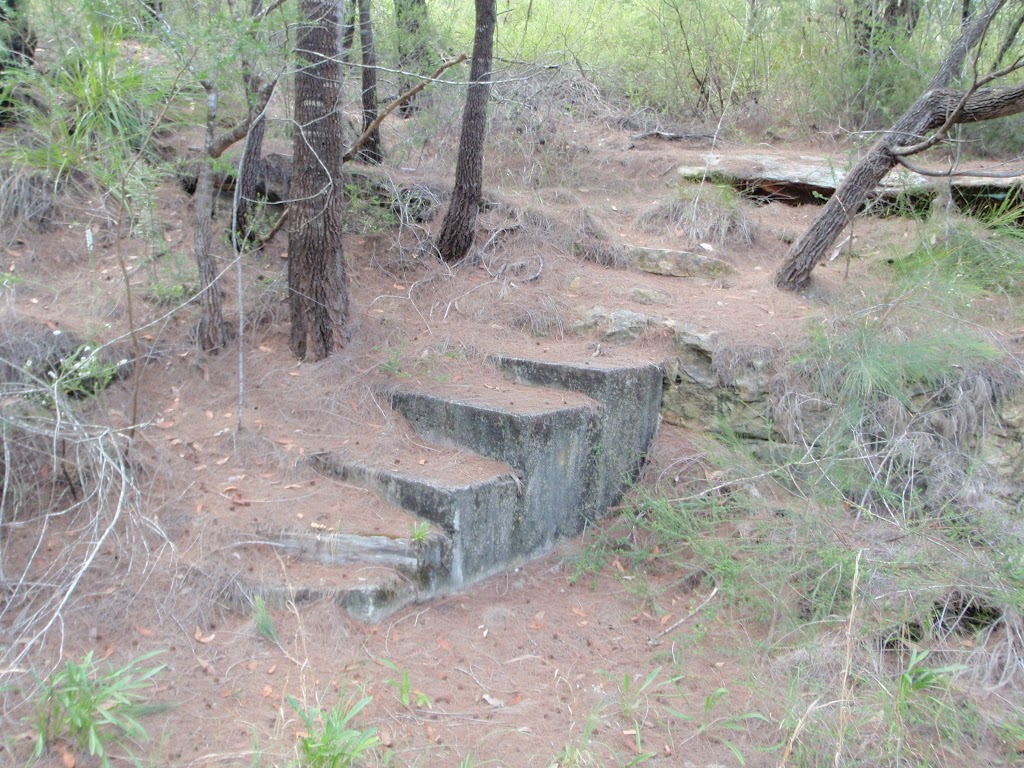 Some old steps on side of the track (126307)