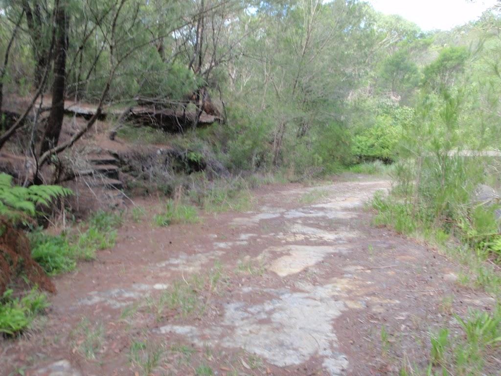 Davidson service trail