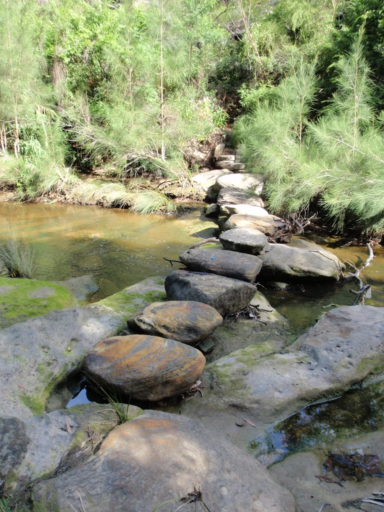 Stepping stones across Middle Harbour Creek (126634)
