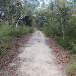 Currie Rd track (127279)