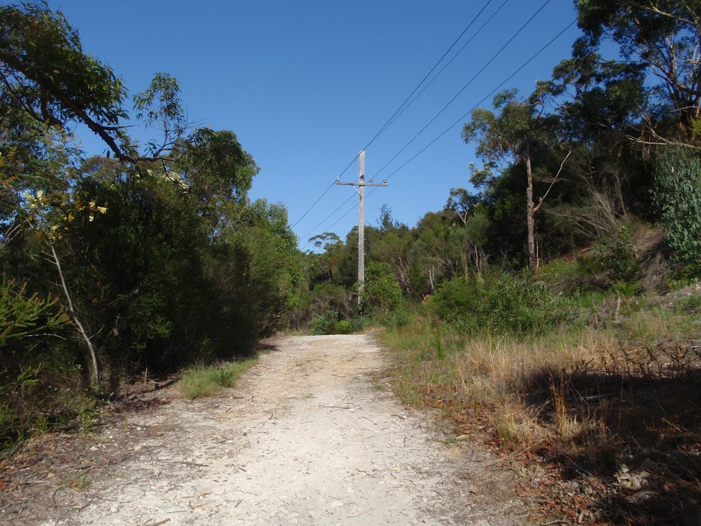 Currie Rd Management Trail