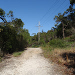 Currie Rd Management Trail (127477)