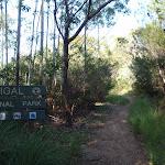 Entering Garigal National Park (127891)