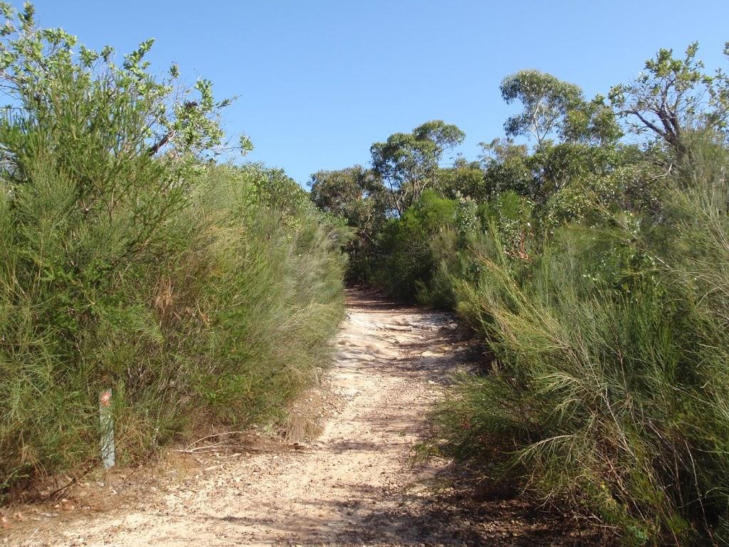 Bluff track