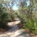 Bluff track (127939)