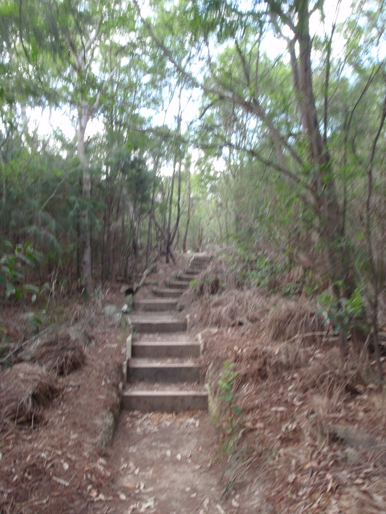 Heading down the wooden steps