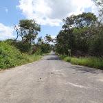 Bantry Bay Road (129115)