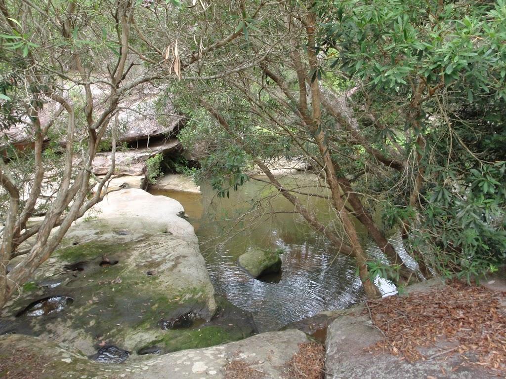 A small waterhole