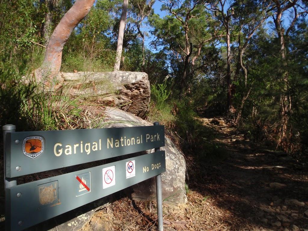 Entering Garigal National Park
